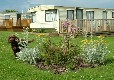Picture of Dronwy Caravan Park, Isle of Anglesey