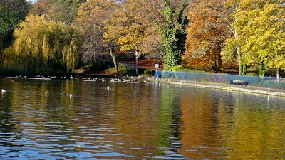 Lister Park Lake, Bradford (© By Flickr user:Tim Green aka atouch (https://www.flickr.com/photos/atoach/5158836501/) [CC BY 2.0  (https://creativecommons.org/licenses/by/2.0)], via Wikimedia Commons (original photo: https://commons.wikimedia.org/wiki/File:Lister_Park_Lake,_Bradford_(6th_November_2010).jpg))