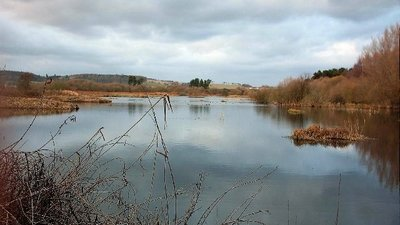 Morton Lochs,Tayport  (© © Copyright Christopher Gillan (https://www.geograph.org.uk/profile/3082)  and licensed for reuse (http://www.geograph.org.uk/reuse.php?id=96055) under this Creative Commons Licence (https://creativecommons.org/licenses/by-sa/2.0/).)