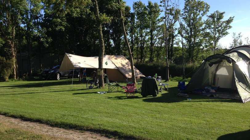 Silver Sands Holiday Park holiday on the Lizard Peninsula - A shaded plot on the tent field