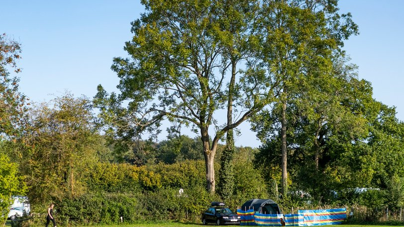 Forest of Dean Holidays - Greenacres Campsite, Gloucestershire