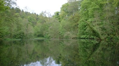 Round Dam, Skipton Woods  (© © Copyright rozinante (https://www.geograph.org.uk/profile/1635) and licensed for reuse (http://www.geograph.org.uk/reuse.php?id=42339) under this Creative Commons Licence (https://creativecommons.org/licenses/by-sa/2.0/).)