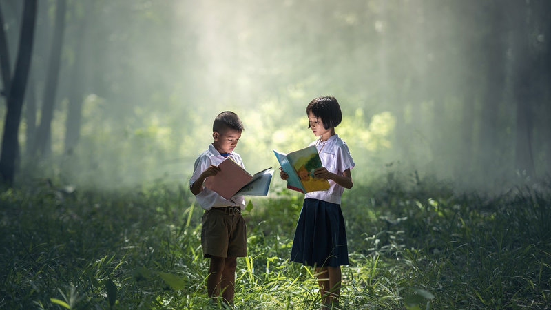 Children reading books in the forest - Camping with children