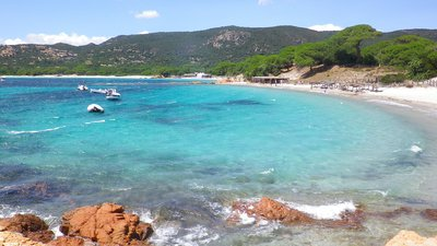 In the region: Plage de Palombaggia (Corse du sud) (© By Freddy DENEUX (Own work) [CC BY-SA 3.0 (http://creativecommons.org/licenses/by-sa/3.0)], via Wikimedia Commons (original photo: https://commons.wikimedia.org/wiki/File:Plage_de_Palombaggia_(Corse_du_sud).jpg.))